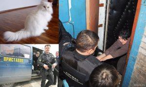 Могут Ли Судебные Приставы Забрать Домашних Животных