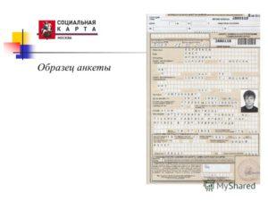 Анкета для получения социальной карты учащегося фото