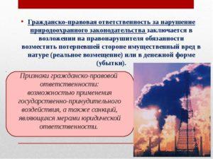 Гражданская практика в отношении экологических правонарушений примеры