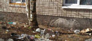 Штраф за выброшенный мусор из окна