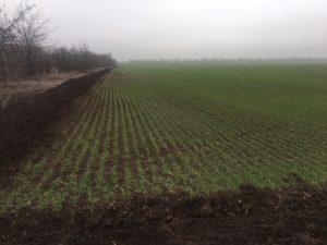 Что гласит закон о выделении земельного пая в 1 га каждому колхознику при ликвидации колхоза ?