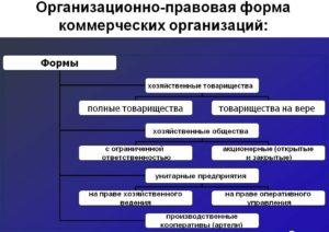 Изменение организационноправовой формы днп
