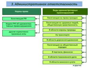 Что Относится К Административной Ответственности Примеры
