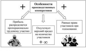 Производственный кооператив пример