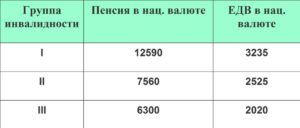 Сколько в россии инвалидов 1 группы достигших 80 лет