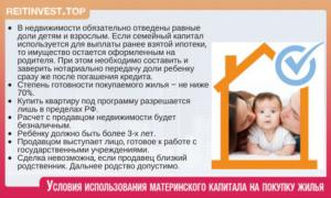 Можно ли купить жилье за мат капитал только на детей