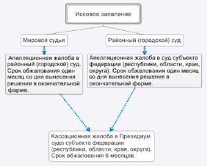 Вопросы краевого суда апелляционной инстанции