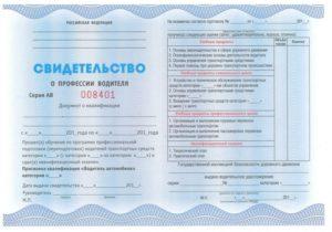 Сколько действует сертификат водителя от автошколы